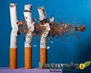 Тютюнопушене, алкохол, токсична среда