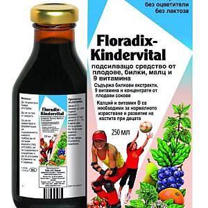 Floradix Kindervital 250мл