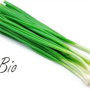 Био зелен лук